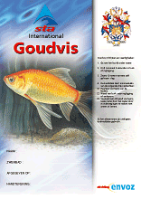 Het Startblok - Certificaat Goudvis